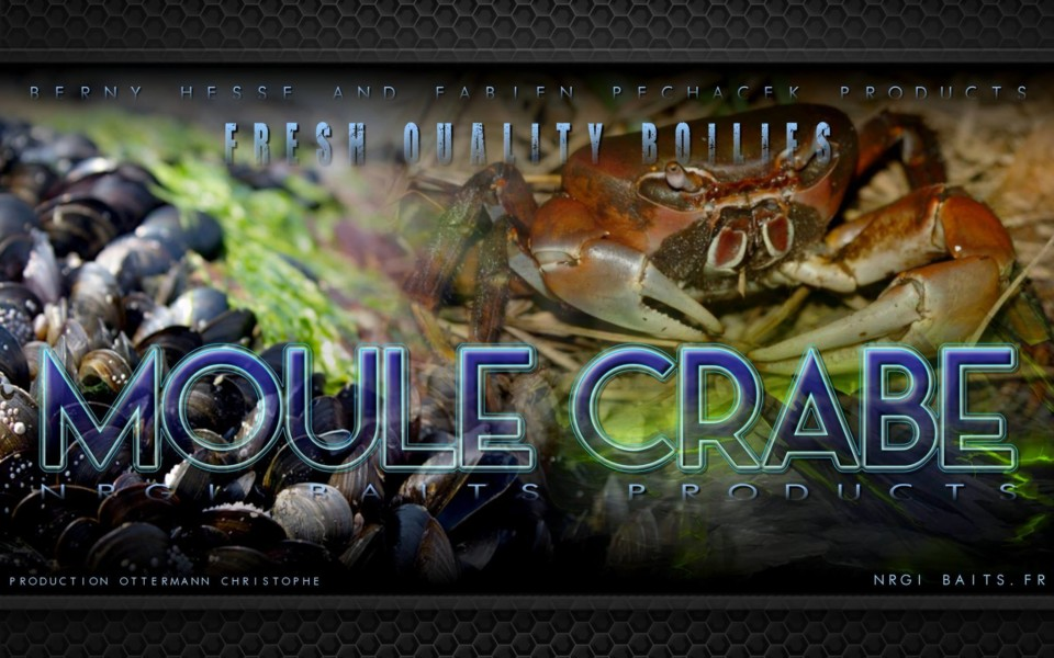 Gamme Moule/Crabe
